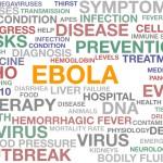 Ebola Virus and Epidemic