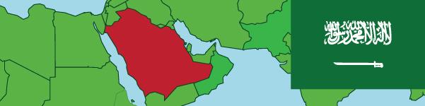 Saudi Arabia Expat Insurance