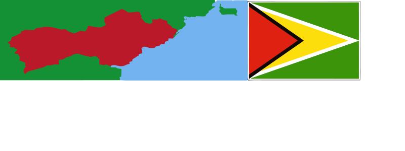 Guyana Expat Insurance