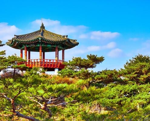 south korea healthcare system