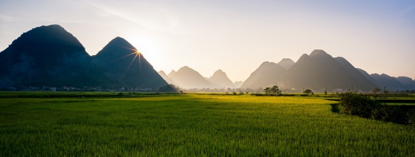 Laos Healthcare