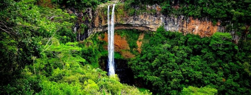Mauritius Insurance